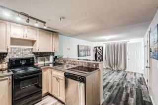 Photo 19: 4703 Waverley Drive SW in Calgary: Westgate Detached for sale : MLS®# A1121500