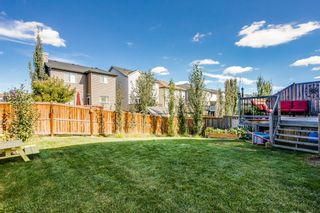 Photo 25: 4 Copperstone Landing SE in Calgary: Copperfield Detached for sale : MLS®# A1147039