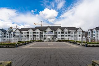 """Photo 35: 206 3142 ST JOHNS Street in Port Moody: Port Moody Centre Condo for sale in """"SONRISA"""" : MLS®# R2602260"""