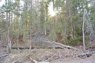 Photo 11: LOT A KLOECKNER Road in Smithers: Smithers - Rural Land for sale (Smithers And Area (Zone 54))  : MLS®# R2598861
