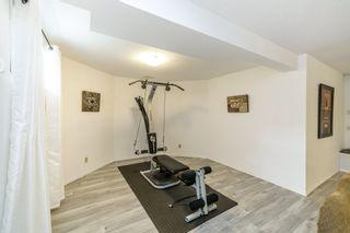 Photo 28: 17 Kingston Close: St. Albert House for sale : MLS®# E4241758