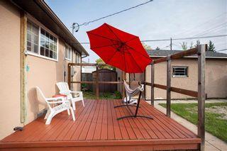 Photo 28: 146 Danbury Bay in Winnipeg: Crestview Residential for sale (5H)  : MLS®# 202023417