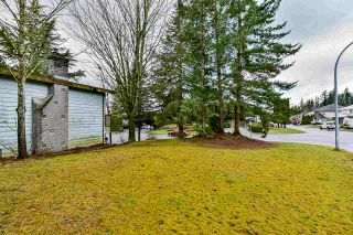 Photo 25: 8116 CAMEL Court in Mission: Mission BC House for sale : MLS®# R2556306