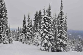 """Photo 6: 217 PRAIRIE Road in Smithers: Smithers - Rural Land for sale in """"Hudson Bay Mountain Resort"""" (Smithers And Area (Zone 54))  : MLS®# R2545464"""
