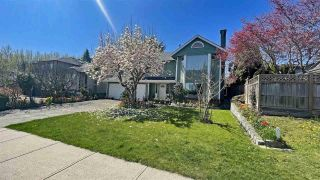 Photo 4: 2481 WILDING WAY in North Vancouver: House for sale : MLS®# R2577487
