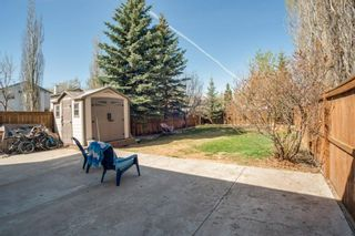 Photo 26: 80 Mt Apex Crescent SE in Calgary: McKenzie Lake Detached for sale : MLS®# A1104238