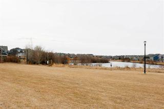 Photo 4: 1265 STARLING Drive in Edmonton: Zone 59 House Half Duplex for sale : MLS®# E4236287