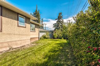 Photo 48: 8248 4A Street SW in Calgary: Kingsland Detached for sale : MLS®# A1150316