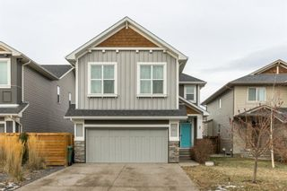 Photo 41: 56 AUBURN SHORES Manor SE in Calgary: Auburn Bay Detached for sale : MLS®# A1052787
