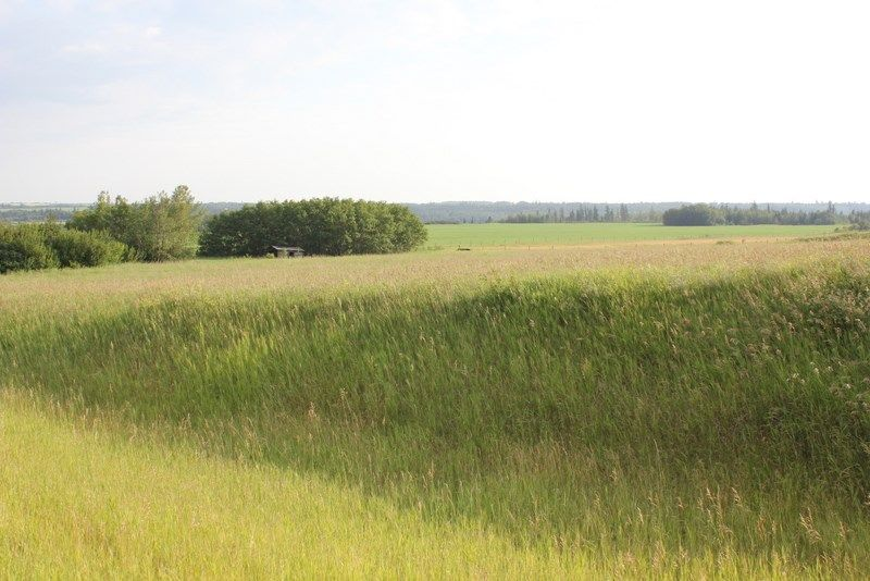 Main Photo: Highway 36 Twp Rd 560: Rural Two Hills County Rural Land/Vacant Lot for sale : MLS®# E4099407