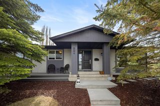 Main Photo: 224 Norseman Road NW in Calgary: North Haven Upper Detached for sale : MLS®# A1107239