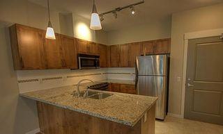 "Photo 3: 408 11950 HARRIS Road in Pitt Meadows: Central Meadows Condo for sale in ""ORIGIN"" : MLS®# V1000099"