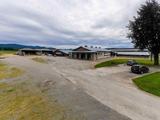 Photo 11: 27625 GRAY Avenue: Agri-Business for sale in Abbotsford: MLS®# C8038691