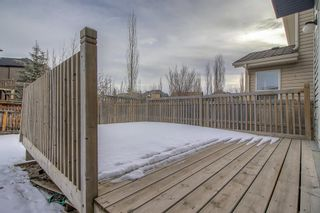 Photo 36: 226 Auburn Bay Boulevard SE in Calgary: Auburn Bay Detached for sale : MLS®# A1061655