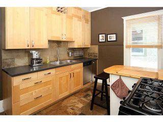 Photo 10: 132 19 Avenue NE in CALGARY: Tuxedo Residential Detached Single Family for sale (Calgary)  : MLS®# C3626887