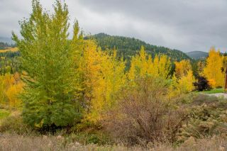 Photo 7: 927 REDSTONE DRIVE in Rossland: Vacant Land for sale : MLS®# 2461564