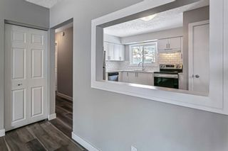 Photo 17: 40 Fyffe Road SE in Calgary: Fairview Detached for sale : MLS®# A1087903