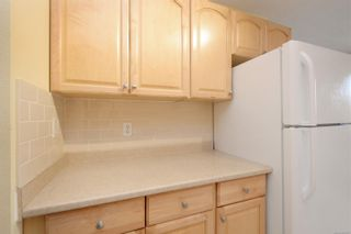 Photo 11: 310 755 Hillside Ave in : Vi Hillside Condo for sale (Victoria)  : MLS®# 869551