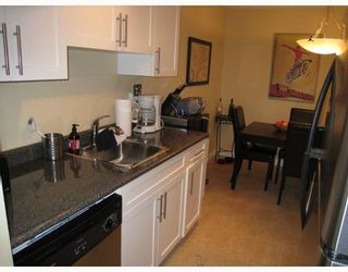 """Photo 3: 229 588 E 5TH Avenue in Vancouver: Mount Pleasant VE Condo for sale in """"MCGREGOR HOUSE"""" (Vancouver East)  : MLS®# V751524"""
