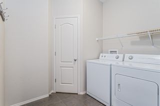 Photo 13: 1200 BRIGHTONCREST Common SE in Calgary: New Brighton Detached for sale : MLS®# A1066654