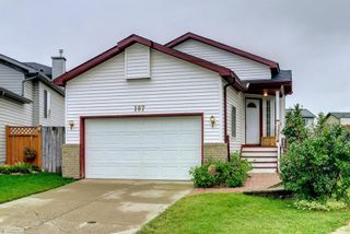 Main Photo: 187 Martin Crossing Close NE in Calgary: Martindale Detached for sale : MLS®# A1145008