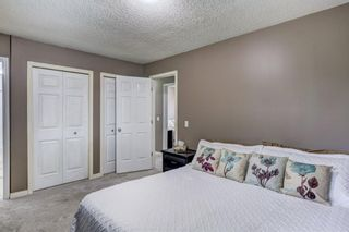 Photo 17: 184 Mountain Circle SE: Airdrie Detached for sale : MLS®# A1137347
