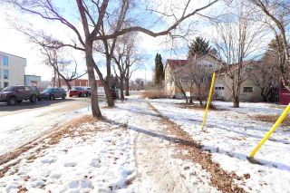 Photo 6: 11005 109 Street in Edmonton: Zone 08 House for sale : MLS®# E4230494