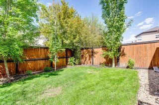 Photo 43: 214 CRANLEIGH View SE in Calgary: Cranston Detached for sale : MLS®# C4300706