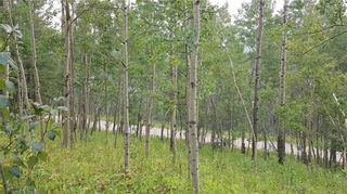 Photo 18: Winchell Lake Road Lot 2, TWP Road 290A: Rural Mountain View County Detached for sale : MLS®# C4200686