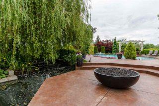 "Photo 16: 31150 POLAR Avenue in Abbotsford: Bradner House for sale in ""POLAR ESTATES"" : MLS®# R2142628"