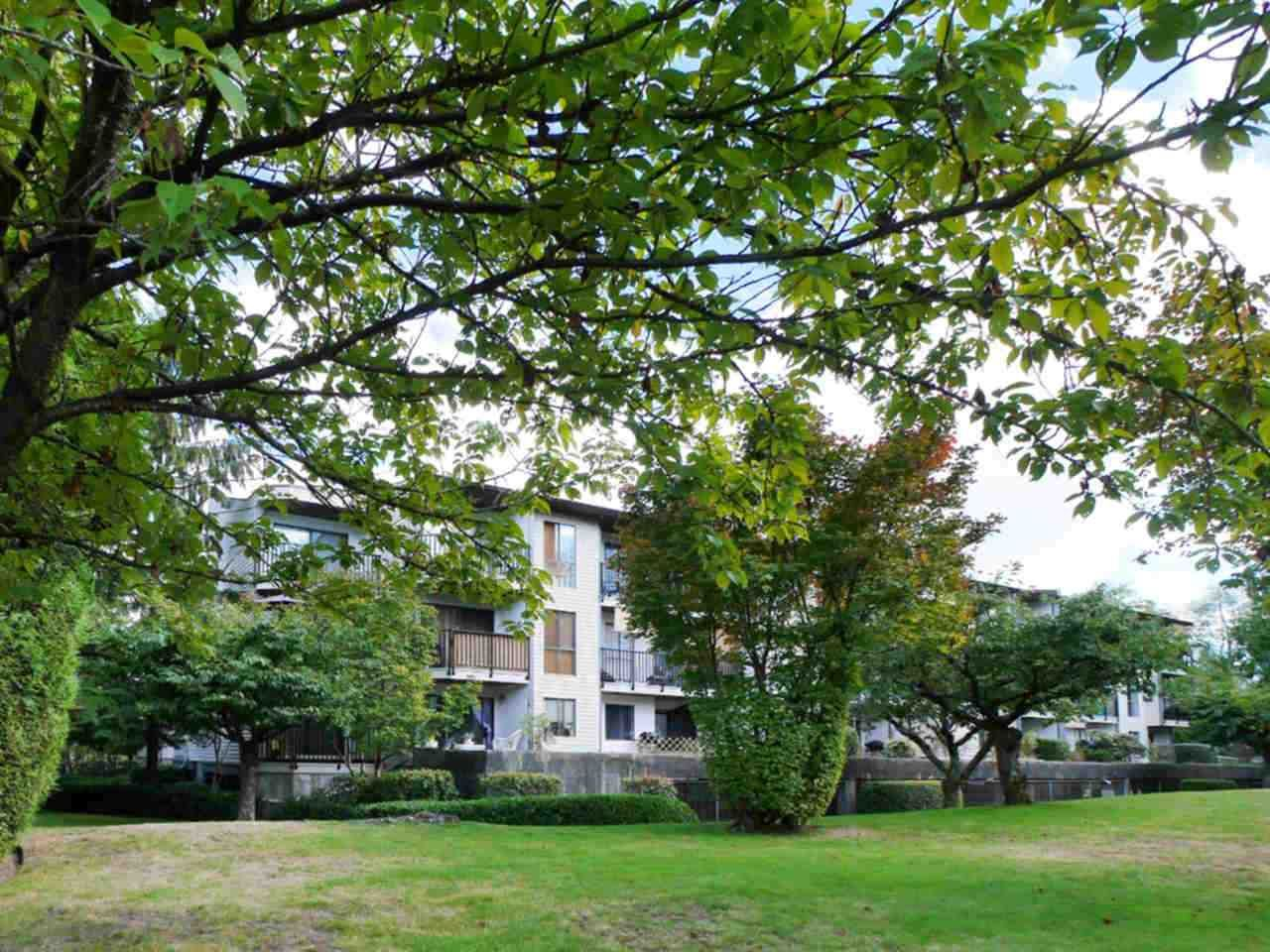 """Photo 3: Photos: 105 9952 149 Street in Surrey: Guildford Condo for sale in """"Tall Timbers"""" (North Surrey)  : MLS®# R2107429"""