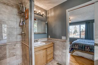 Photo 25: 543 Lake Newell Crescent SE in Calgary: Lake Bonavista Detached for sale : MLS®# A1081450