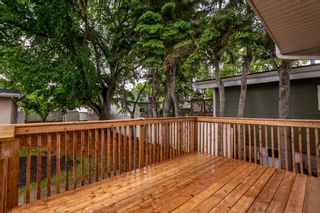 Photo 42: 9151 150 Street in Edmonton: Zone 22 House for sale : MLS®# E4250068