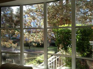 "Photo 4: 104 5500 ARCADIA Road in Richmond: Brighouse Condo for sale in ""REGENCY VILLA"" : MLS®# V975438"