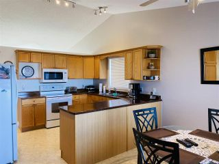 Photo 9: 10020 180 A Avenue NW in Edmonton: Zone 27 House for sale : MLS®# E4229734