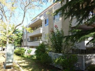 Photo 2: 203 6388 MARLBOROUGH AVENUE in Burnaby South: Home for sale : MLS®# R2113652