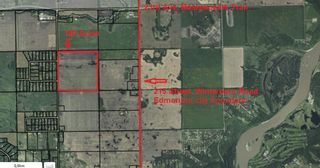 Photo 4: 51515 RGE RD 261: Rural Parkland County Rural Land/Vacant Lot for sale : MLS®# E4241230