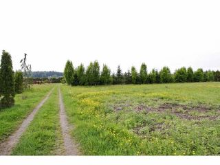 """Photo 14: 7200 216TH Street in Langley: Willoughby Heights Land for sale in """"Milner"""" : MLS®# F1411651"""