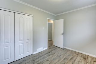 Photo 13: 4 Fawn Crescent SE in Calgary: Fairview Detached for sale : MLS®# A1066192