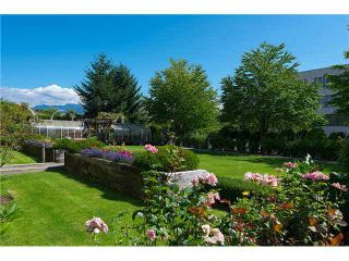 """Photo 19: 207 4425 HALIFAX Street in Burnaby: Brentwood Park Condo for sale in """"POLARIS"""" (Burnaby North)  : MLS®# V1078768"""