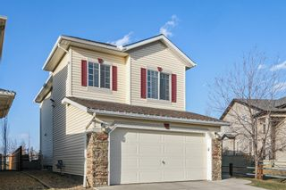Photo 35: 143 Chapman Circle SE in Calgary: Chaparral Detached for sale : MLS®# A1091660