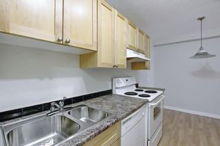 Photo 5: 504 1240 12 Avenue SW in Calgary: Beltline Apartment for sale : MLS®# A1093154