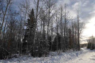 "Photo 17: 1 3000 DAHLIE Road in Smithers: Smithers - Rural Land for sale in ""Mountain Gateway Estates"" (Smithers And Area (Zone 54))  : MLS®# R2280132"