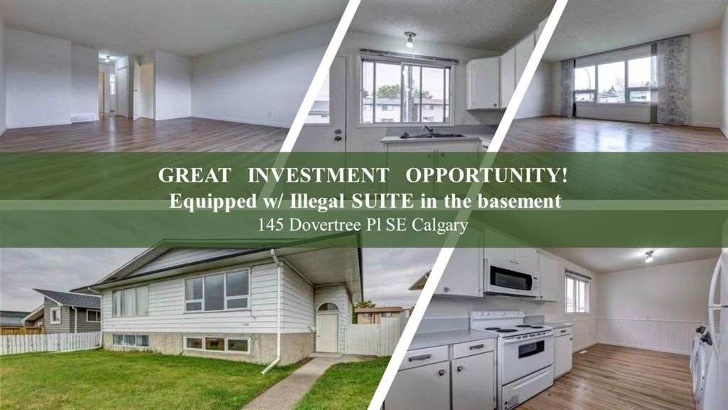 Main Photo: 145 Dovertree Place SE in Calgary: Dover Semi Detached for sale : MLS®# A1090891