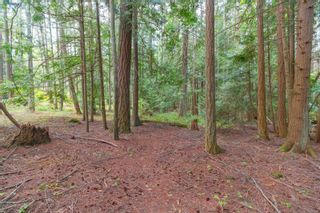 Photo 26: 2180 Curteis Rd in : NS Curteis Point House for sale (North Saanich)  : MLS®# 850812