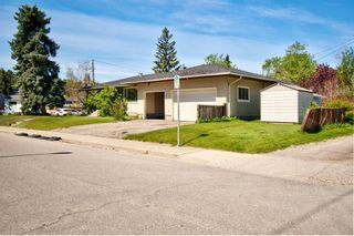 Photo 34: 503 35 Street NW in Calgary: Parkdale Detached for sale : MLS®# A1115340