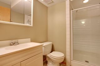 Photo 19: 134 Edgebrook Close NW in Calgary: 2 storey for sale : MLS®# C3616951