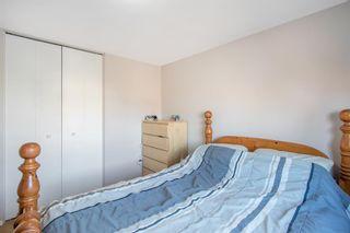 Photo 14: 31 Doverglen Crescent SE in Calgary: Dover Detached for sale : MLS®# A1083089
