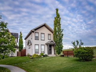 Main Photo: 350 Elgin Place SE in Calgary: McKenzie Towne Detached for sale : MLS®# A1119374