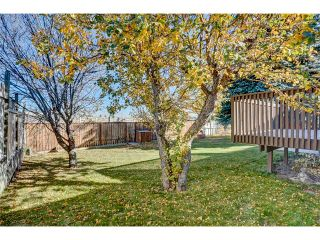 Photo 27: 5612 LADBROOKE Drive SW in Calgary: Lakeview House for sale : MLS®# C4036600